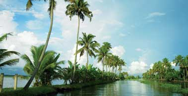 backwater of alappuzha